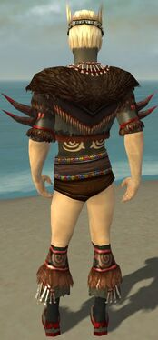 Ritualist Norn Armor M gray chest feet back