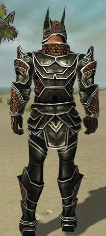 File:Warrior Kurzick Armor M dyed back.jpg