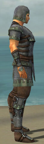 File:Warrior Tyrian Armor M gray side.jpg
