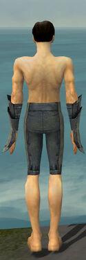 Elementalist Krytan Armor M gray arms legs back