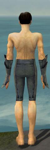 File:Elementalist Krytan Armor M gray arms legs back.jpg