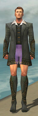 Mesmer Krytan Armor M gray chest feet front
