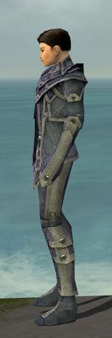 File:Elementalist Krytan Armor M gray side.jpg