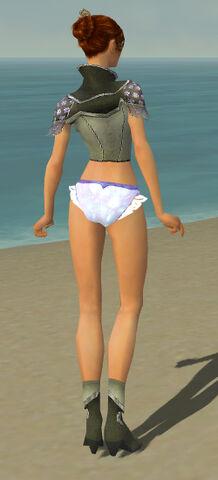 File:Elementalist Shing Jea Armor F gray chest feet back.jpg