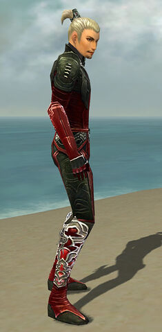 File:Assassin Deldrimor Armor M dyed side.jpg