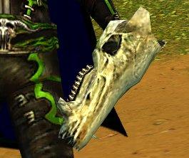 File:Bleached Skull.jpg