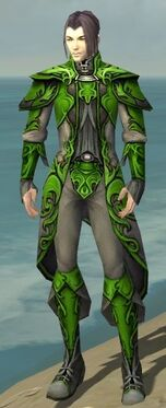 Elementalist Monument Armor M dyed front