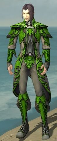 File:Elementalist Monument Armor M dyed front.jpg