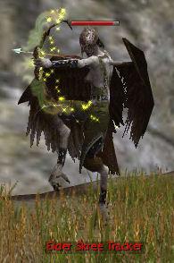 Elder Skree Tracker