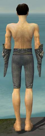 File:Elementalist Stoneforged Armor M gray arms legs back.jpg