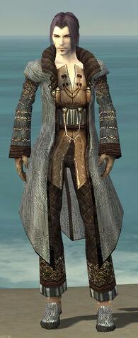 File:Elementalist Vabbian Armor M gray front.jpg