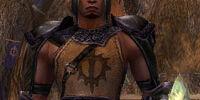 Shining Blade Warrior