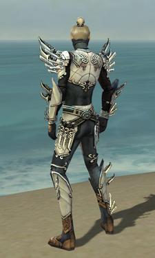 Assassin Asuran Armor M dyed back