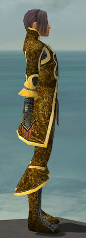 File:Elementalist Elite Canthan Armor M dyed side.jpg