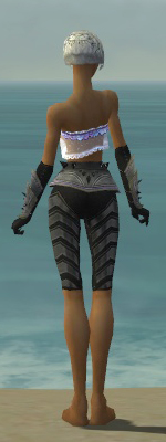 File:Elementalist Obsidian Armor F gray arms legs back.jpg