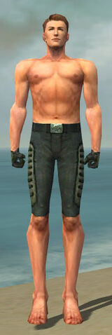 File:Mesmer Rogue Armor M gray arms legs front.jpg