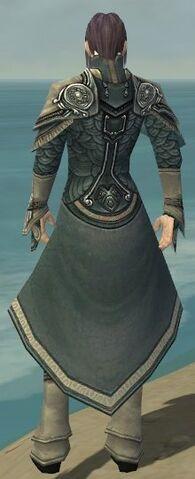 File:Elementalist Asuran Armor M gray back.jpg