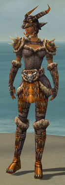 Warrior Charr Hide Armor F dyed front