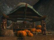 Halloween Droknar Pumpkins