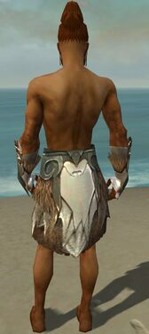 Paragon Norn Armor M gray arms legs back