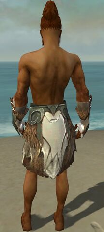 File:Paragon Norn Armor M gray arms legs back.jpg