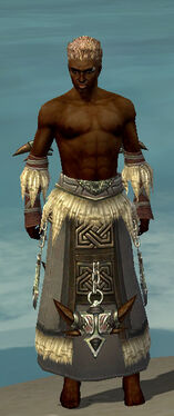 Dervish Norn Armor M gray arms legs front