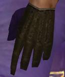File:Mesmer Monument Armor M dyed gloves.jpg