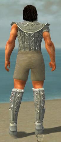 File:Warrior Ascalon Armor M gray chest feet back.jpg