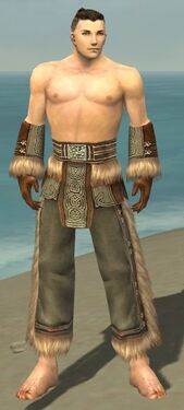 Monk Norn Armor M gray arms legs front