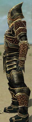 File:Warrior Kurzick Armor M gray side.jpg