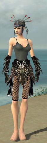 File:Necromancer Elite Luxon Armor F gray arms legs front.jpg