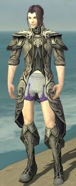 Elementalist Monument Armor M gray chest feet front