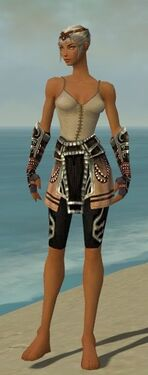 Warrior Ancient Armor F gray arms legs front