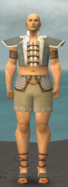 Monk Krytan Armor M gray chest feet front