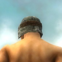 File:Warrior Sunspear Armor M gray head back.jpg