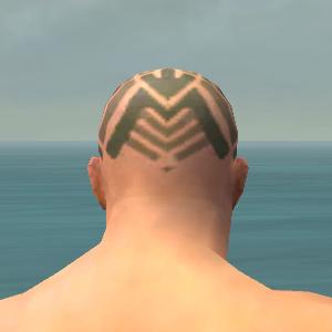File:Monk Labyrinthine Armor M gray head back.jpg