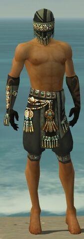 File:Ritualist Elite Luxon Armor M gray arms legs front.jpg