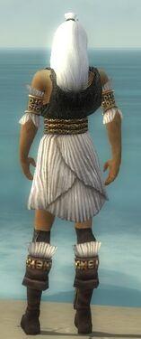 Elementalist Elite Sunspear Armor M gray chest feet back