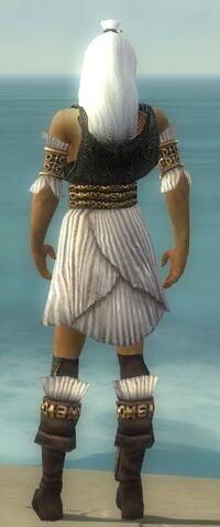 File:Elementalist Elite Sunspear Armor M gray chest feet back.jpg