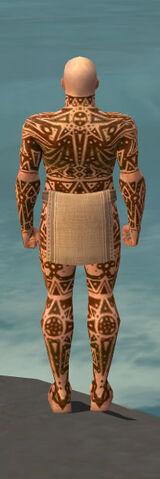 File:Monk Star Armor M dyed back.jpg