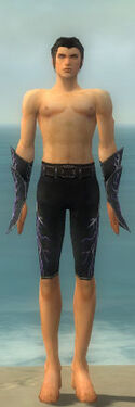 Elementalist Elite Stormforged Armor M gray arms legs front
