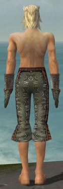 Elementalist Istani Armor M gray arms legs back