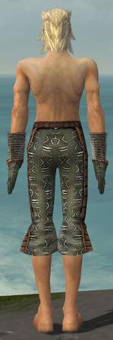 File:Elementalist Istani Armor M gray arms legs back.jpg