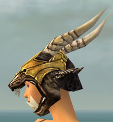 File:Warrior Elite Charr Hide Armor F dyed head side.jpg