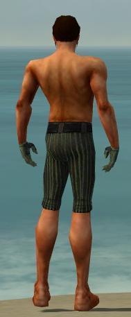 File:Mesmer Kurzick Armor M gray arms legs back.jpg