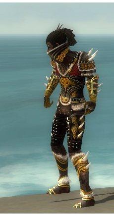 File:Necromancer Norn Armor M dyed side.jpg