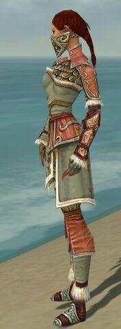 File:Ranger Elite Canthan Armor F gray side.jpg
