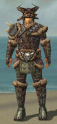 Warrior Charr Hide Armor M gray front