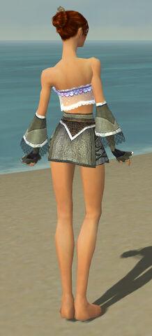 File:Elementalist Kurzick Armor F gray arms legs back.jpg