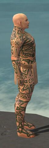 File:Monk Star Armor M gray side.jpg